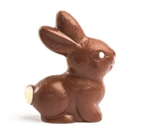 Chocolate bunny on white background